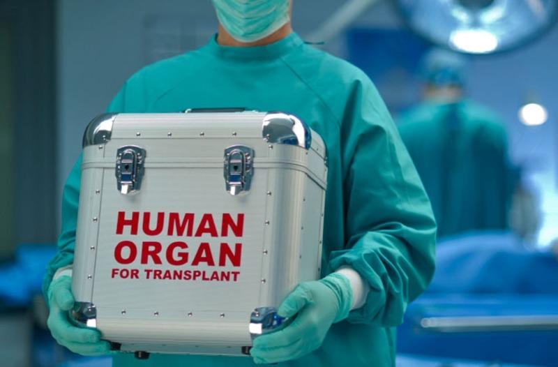 EXPLOZIV: ANCHETA MILENIULUI | Cine a creat în secret Agenţia Naţională de Transplant pentru politicieni şi VIP-uri