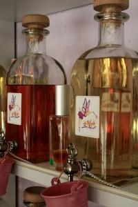 parfumuri-alexandria (13)