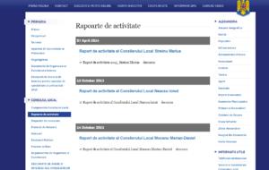 Raport de activitate consilieri locali
