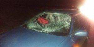 Accident pe şoseaua Alexandria-Cernetu